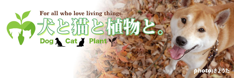 犬と猫と植物と。